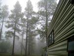 Oak Creek Canyon Camping