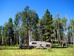 Kendrick Mountain Camping