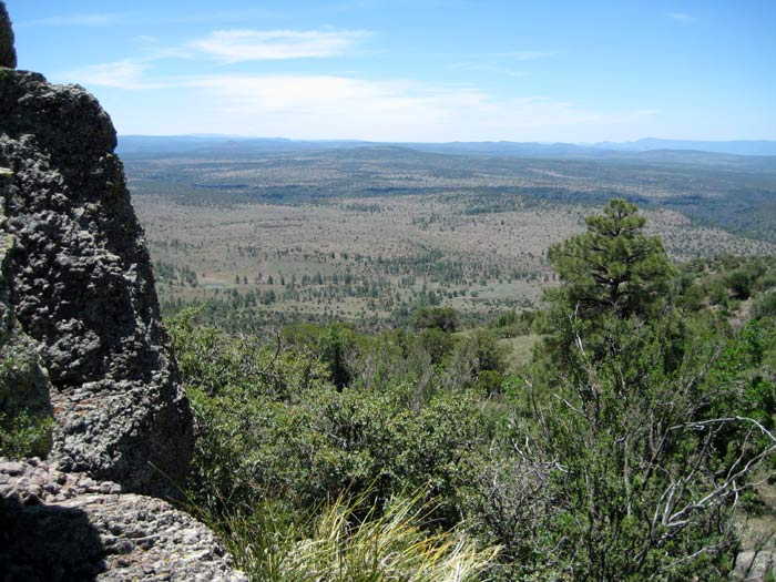 View of the Coconino National Forest from the top of Apache Maid Mountain