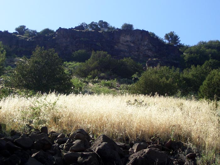 View of the hillside while hiking Apache Maid Trail in Wet Beaver Wilderness Area