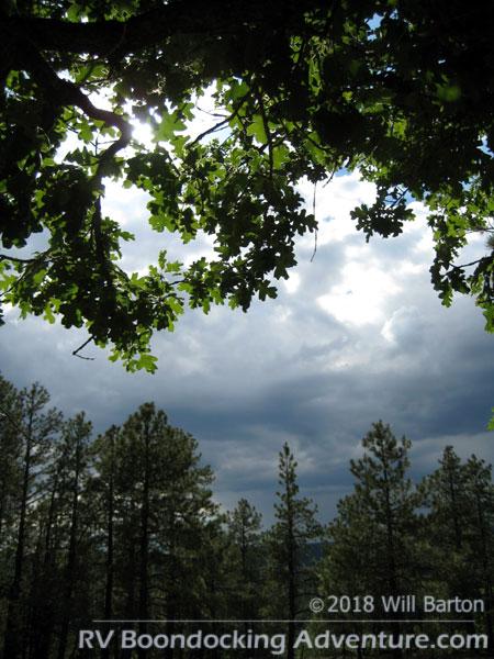 It's early July and Arizona monsoon season has begun