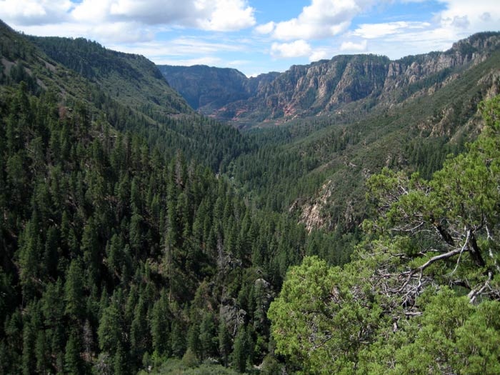 Another fine view of Oak Creek Canyon from Thomas Point Trail