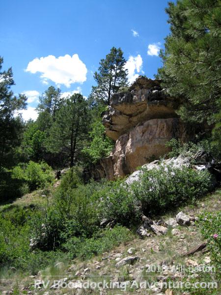 Limestone rock outcropping