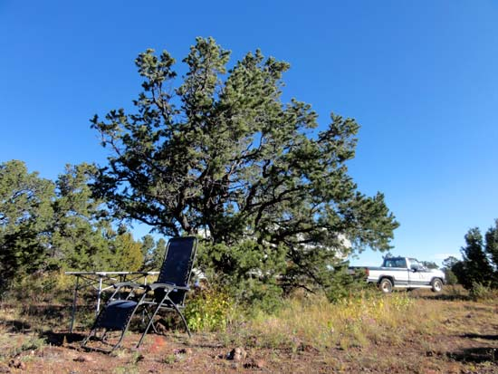Apache National Forest Camping