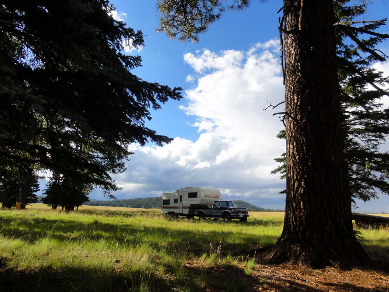 Apache National Forest Campsite