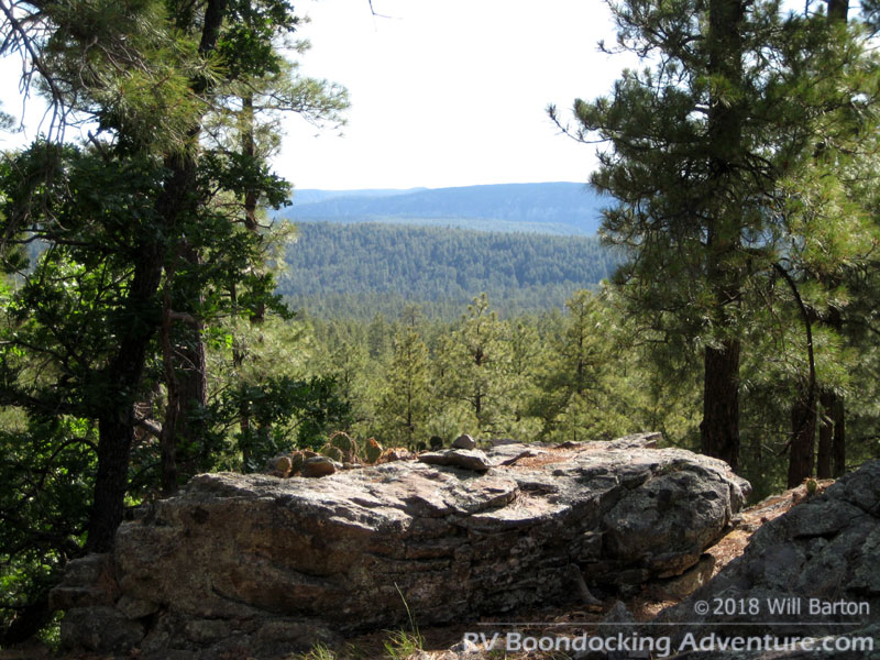 A nice spot with a view on a hill in the Coconino National Forest