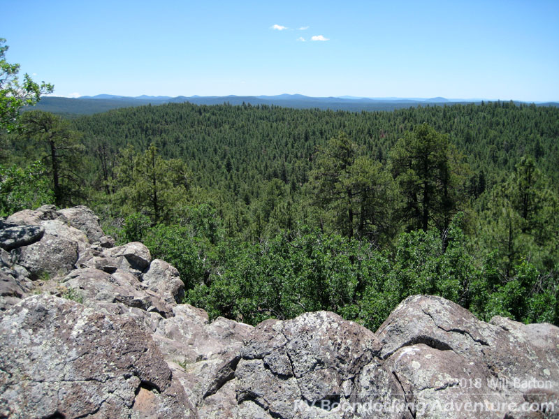 Another view of the Coconino National Forest from Coulter Hill (7,712 feet in elevation)