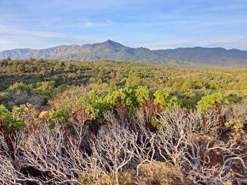 Mazatzal Mountains, Arizona