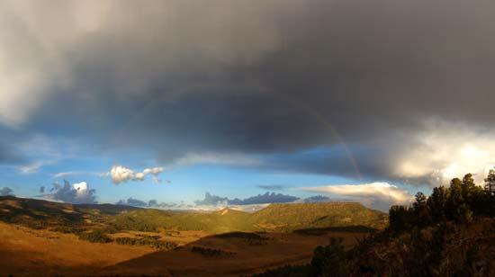 Murray Basin Rainbow