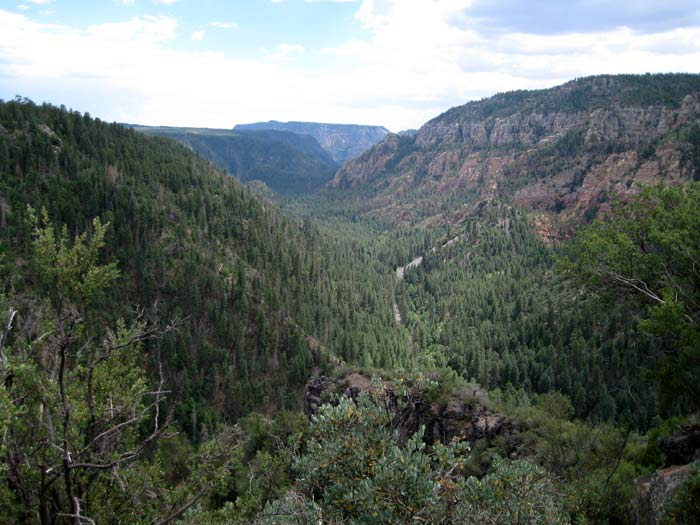 View of Oak Creek Canyon from the Oak Creek Vista along Highway 89A. The highway takes a big plunge down into the canyon after this point.
