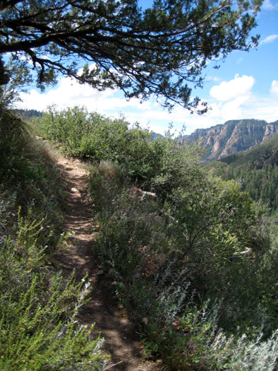 Hiking the Thomas Point Trail up the east side of Oak Creek Canyon