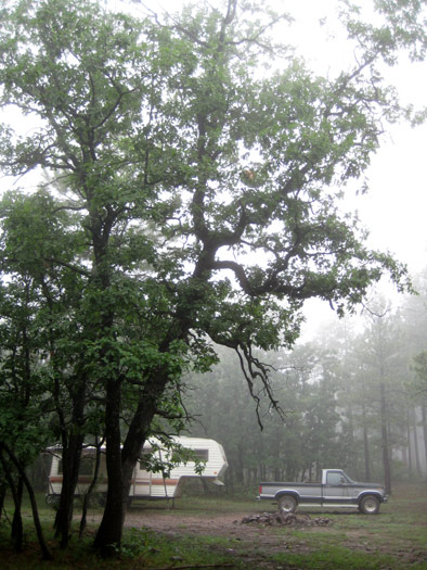 RV boondocking above Oak Creek Canyon north of West Fork Oak Creek off national forest road 535. Thick fog on this day.