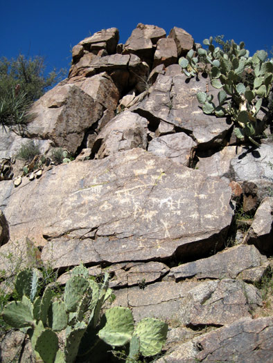 Prehistoric  petroglyphs found near the confluence of Badger Springs Wash and the Agua Fria River