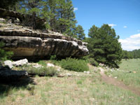 Picture of Priest Draw and Limestone of the Kaibab Formation near Flagstaff, AZ