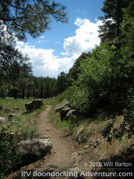Here's the trail through the draw. Hiking doesnÂ't get much easier than this!