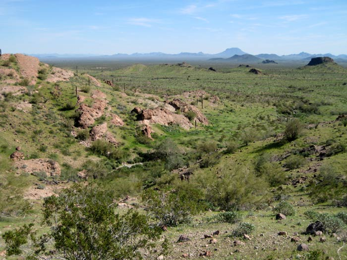 View of the Sonoran Desert and Woolsey Peak from the southeast side of Saddle Mountain