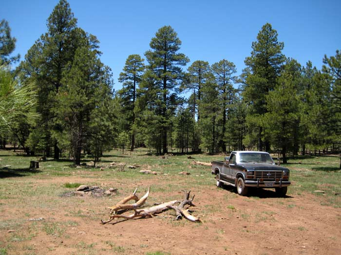 A great camping site east of Stoneman Lake off of Forest Service Road 213