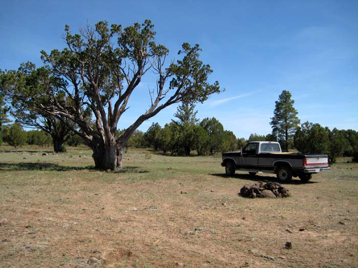 Here's another excellent campsite near Stoneman Lake in the Coconino National Forest.  This site is near the intersection of FR-229 and FR-230.