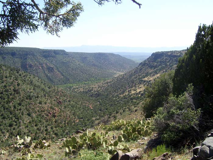 View of Wet Beaver Creek Canyon from the Apache Maid Trail in Wet Beaver Wilderness