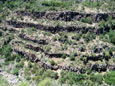 Picture of Wet Beaver Wilderness and The Canyon Wall of Wet Beaver Creek , AZ