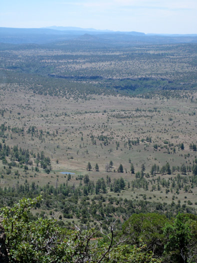 The Coconino National Forest looking toward  Wet Beaver Creek from the top of Apache Maid Mountain