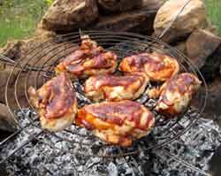 Campfire grill