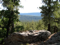 Picture From a Hill In The Coconino National Forest, Arizona Near Flagstaff