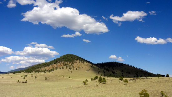 Government Prairie near Flagstaff, Arizona