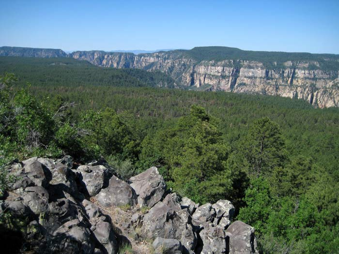 Oak Creek Canyon as it slices its way through a landscape of Ponderosa Pines. This picture was taken from Ritter Butte (elevation 6988 feet) along the east rim and east of Pine Flat Campground.