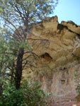 Picture of Priest Draw Limestone Rock near Flagstaff, Arizona