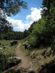 Picture of the Priest Draw Trail near Flagstaff, Arizona