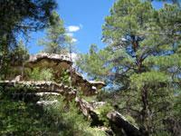 Picture of Beautiful Limestone Rock at Priest Draw near Flagstaff, Arizona