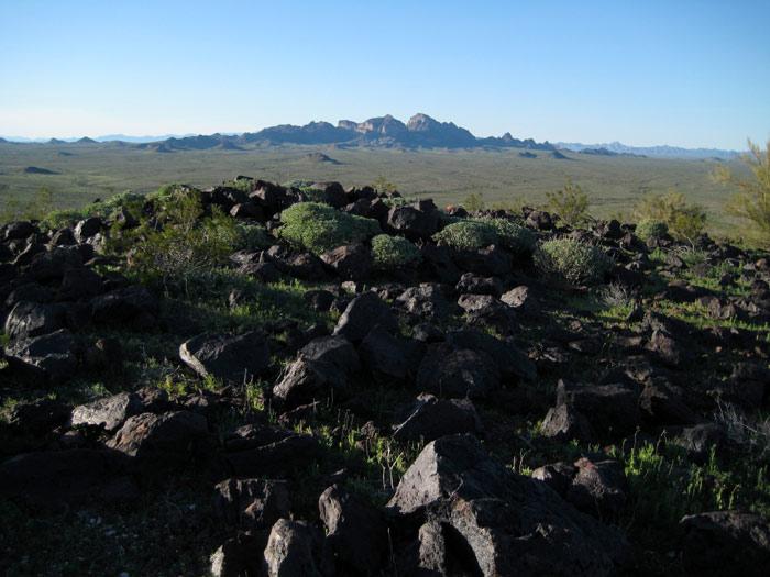 Statuesque Saddle Mountain from atop Rose Mountain