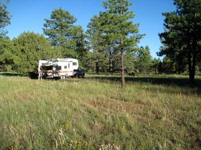 RV camping near Ashurst Lake