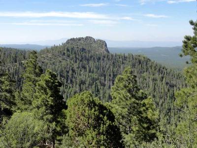 Hiking Bixler Saddle Trail up Bill Williams Mountain