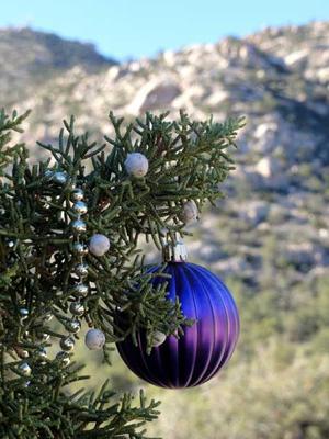 Celebrating Christmas at Christmas Tree Pass