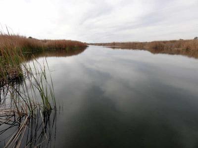 Ahakhav Tribal Preserve just across the river near Parker