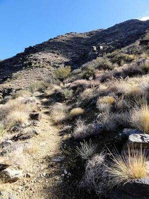 Hiking the Harquahala Pack Trail to the Peak