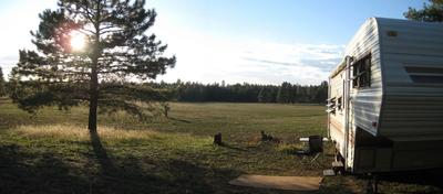 RV camping at the edge of the forest meadow