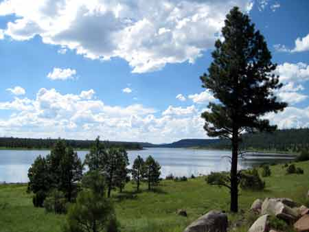 RV jobs with the forest service