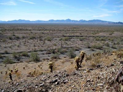 The vast La Posa Plain where Quartzsite resides