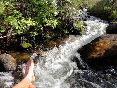Cooling off at Horton Creek